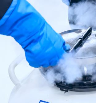 Заморозка и хранение стволовых клеток