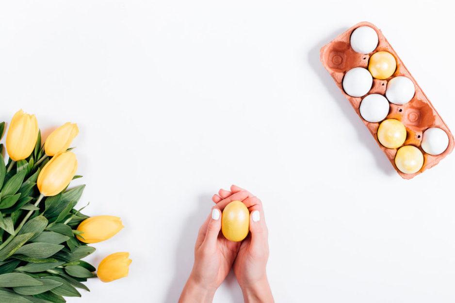 Донорство яйцеклеток: как проходит